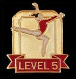 Custom Gymnastics Lapel Pin-'Level 5'