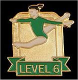 Custom Gymnastics Lapel Pin-'Level 6'