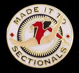 Custom Girls' Gymnastics Lapel Pin-'Made It to Sectionals'