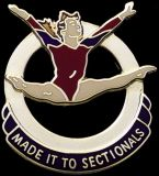 Custom Gymnastics Lapel Pin-'Made It to Sectionals'